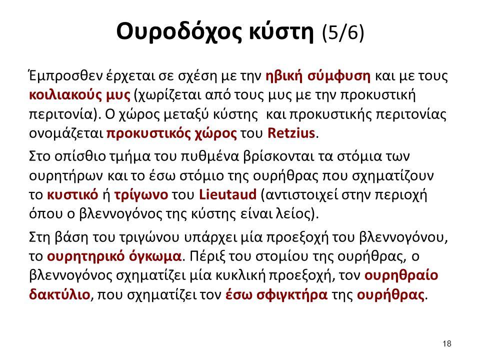 Ουροδόχος κύστη (6/6)