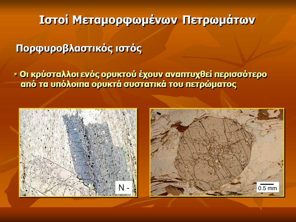 Ιστοί Μεταμορφωμένων Πετρωμάτων