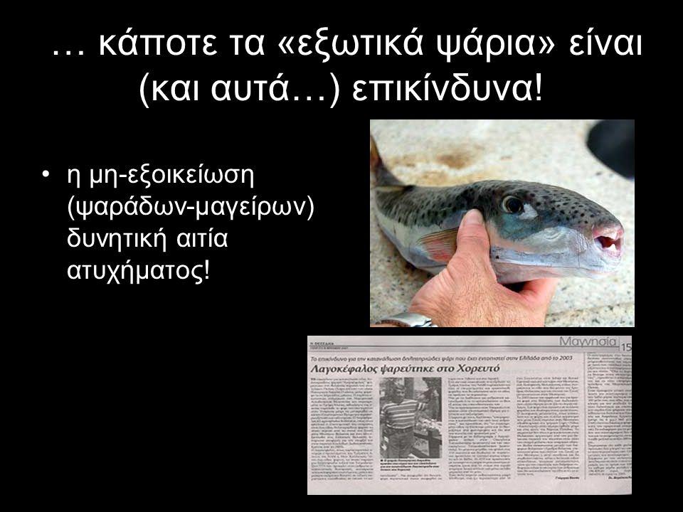 … κάποτε τα «εξωτικά ψάρια» είναι (και αυτά…) επικίνδυνα!