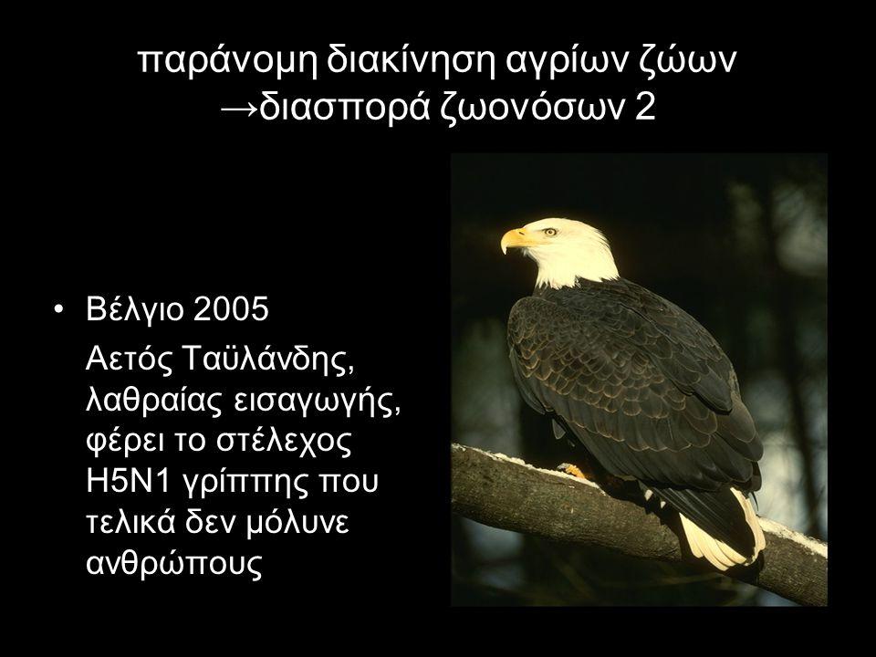 παράνομη διακίνηση αγρίων ζώων →διασπορά ζωονόσων 2