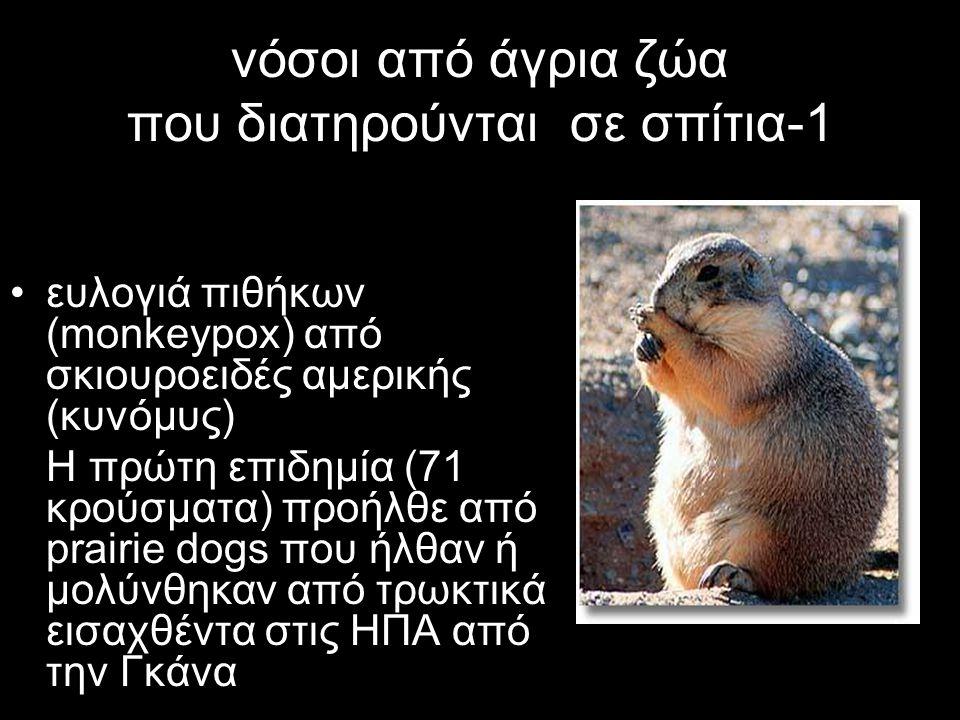 νόσοι από άγρια ζώα που διατηρούνται σε σπίτια-1