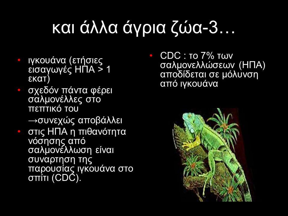 και άλλα άγρια ζώα-3… ιγκουάνα (ετήσιες εισαγωγές ΗΠΑ > 1 εκατ)