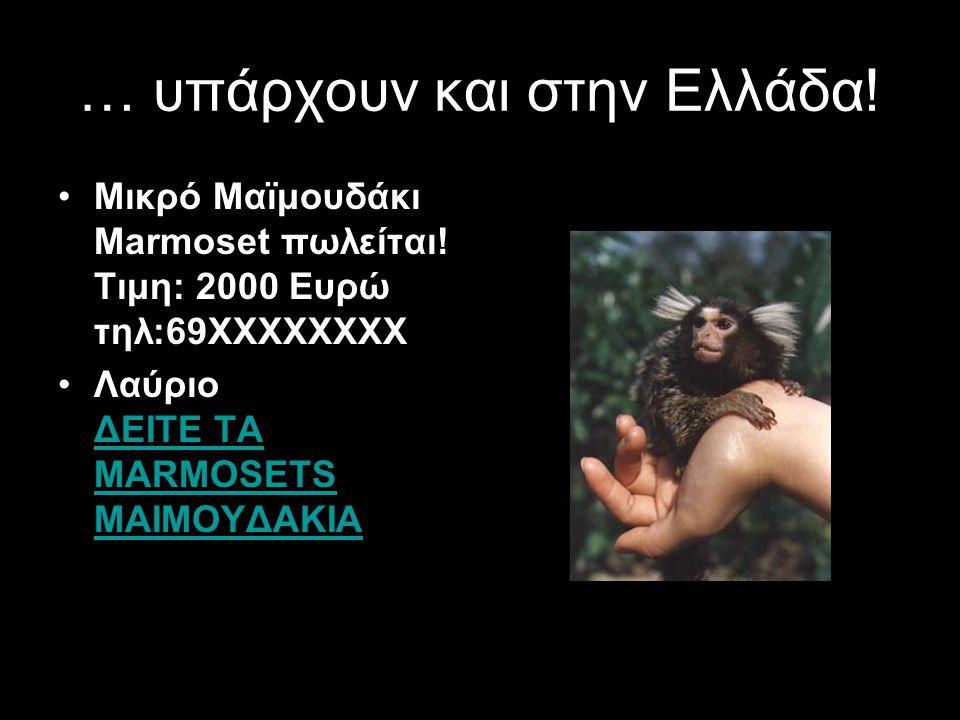 … υπάρχουν και στην Ελλάδα!