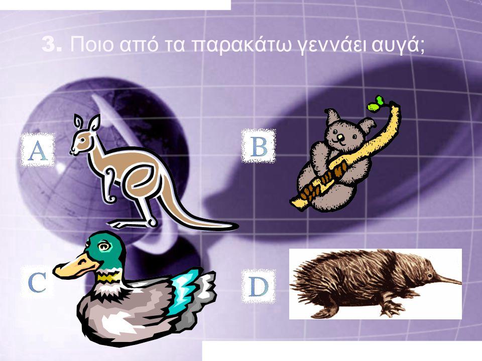 3. Ποιο από τα παρακάτω γεννάει αυγά;