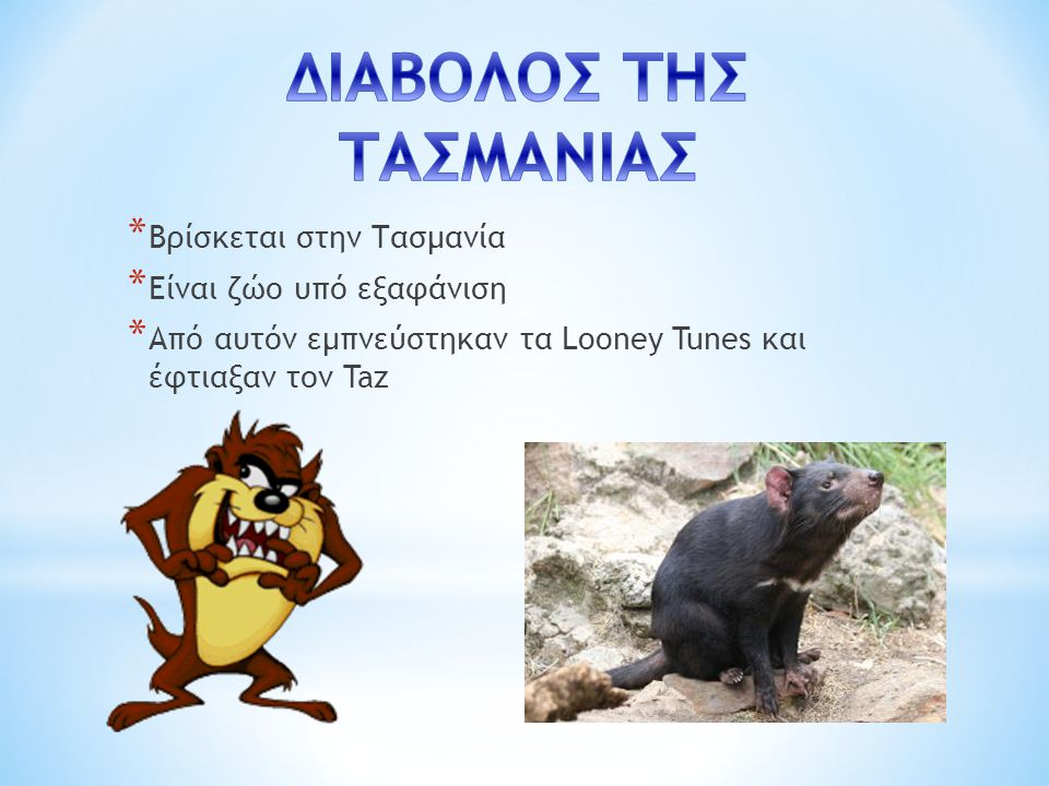 ΔΙΑΒΟΛΟΣ ΤΗΣ ΤΑΣΜΑΝΙΑΣ