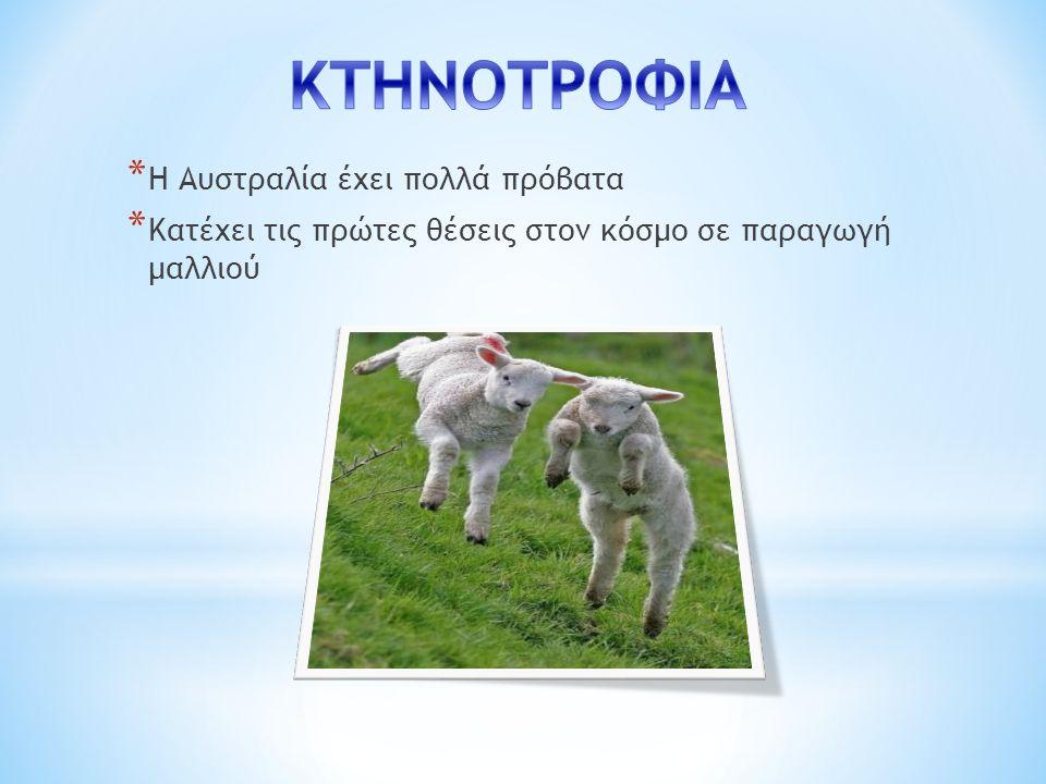 ΚΤΗΝΟΤΡΟΦΙΑ Η Αυστραλία έχει πολλά πρόβατα