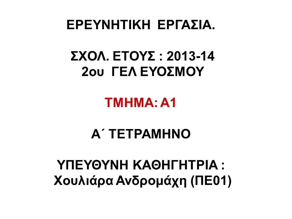 Χουλιάρα Ανδρομάχη (ΠΕ01)
