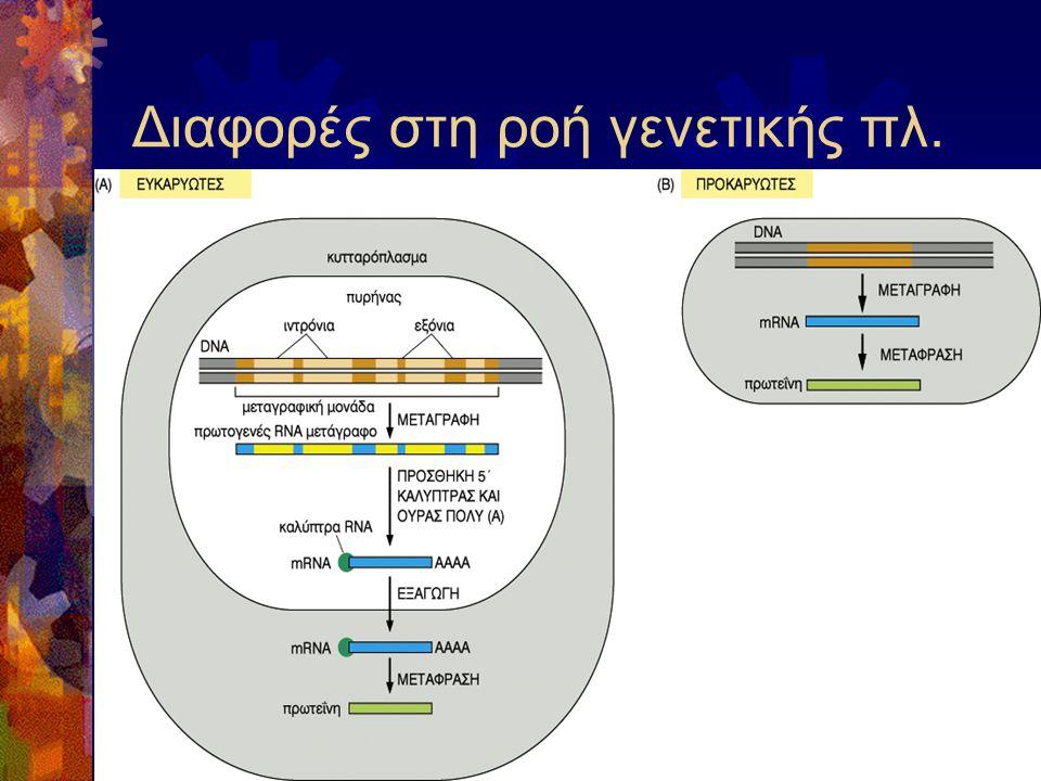 Διαφορές στη ροή γενετικής πλ.