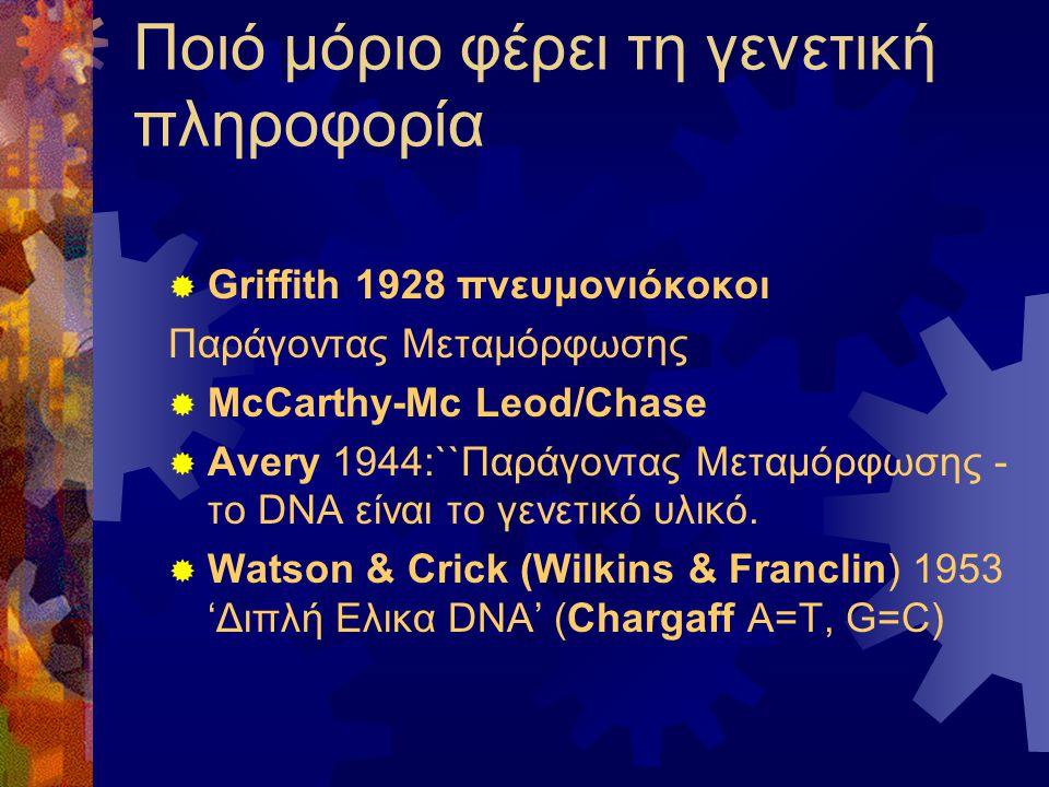 Ποιό μόριο φέρει τη γενετική πληροφορία
