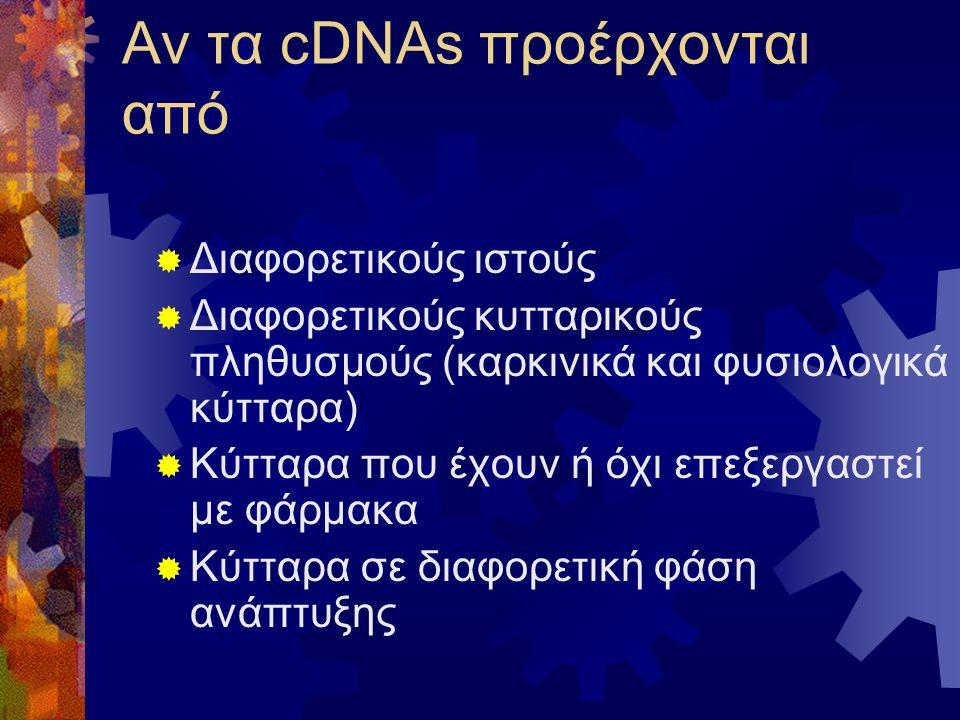 Αν τα cDNAs προέρχονται από