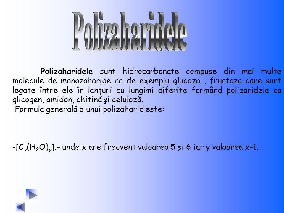 Polizaharidele