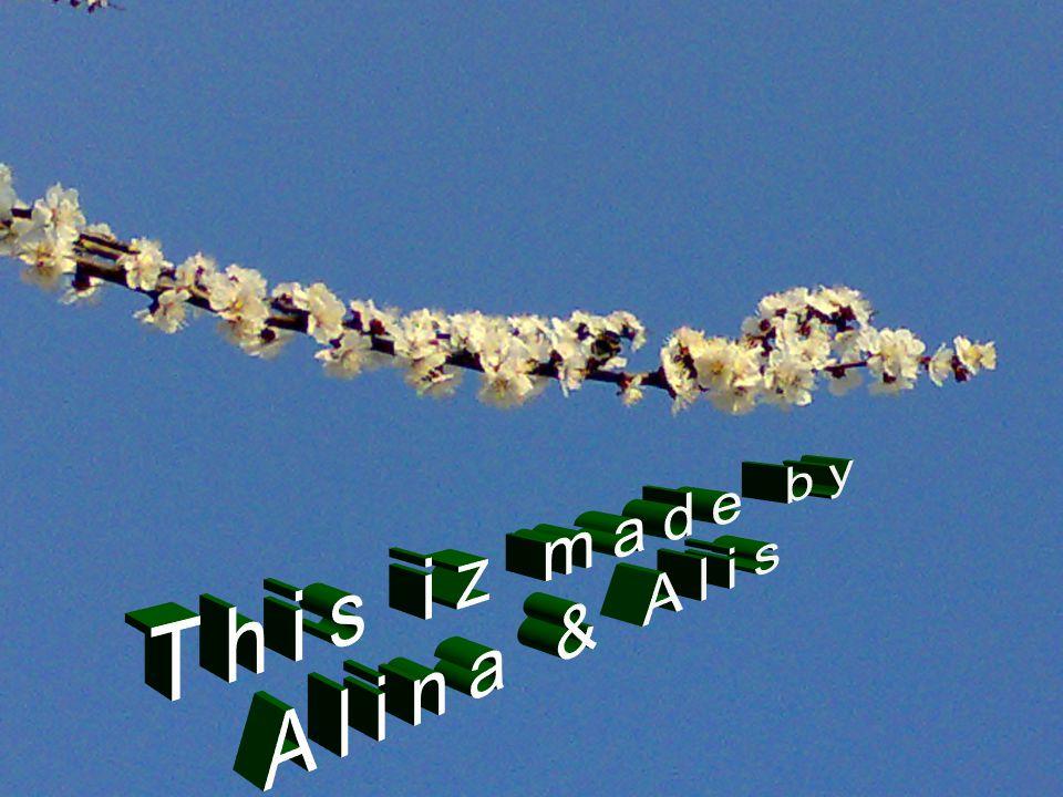 This iz made by Alina & Alis