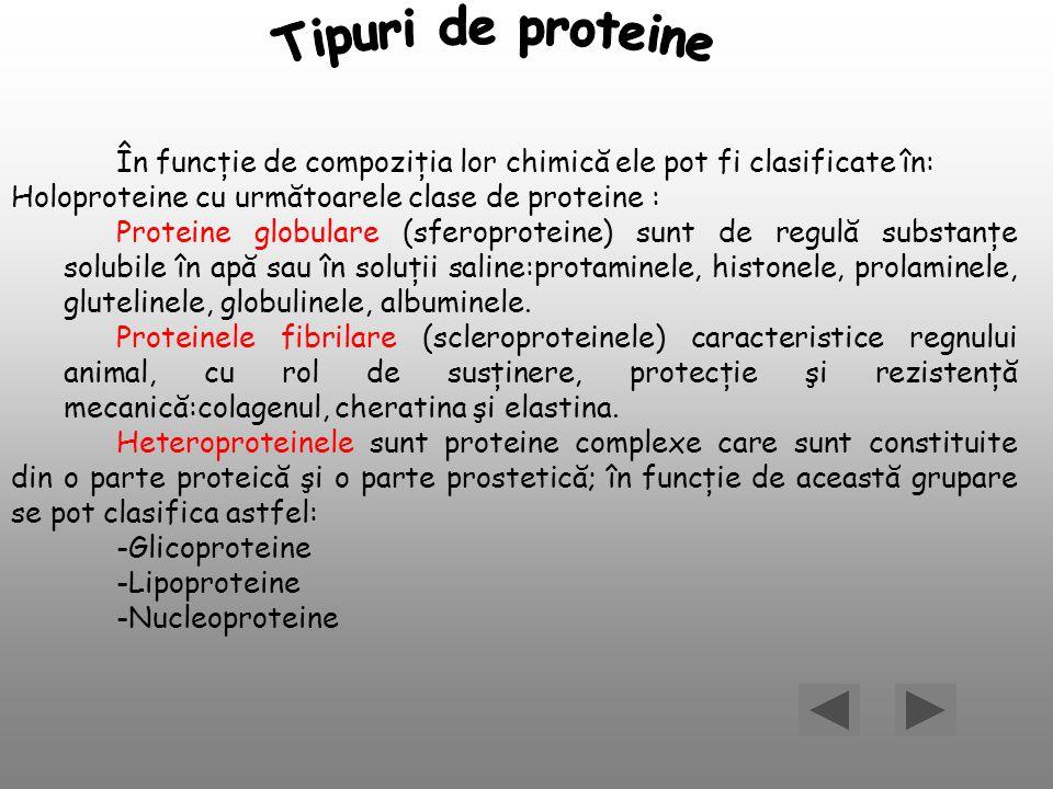 Tipuri de proteine În funcţie de compoziţia lor chimică ele pot fi clasificate în: Holoproteine cu următoarele clase de proteine :