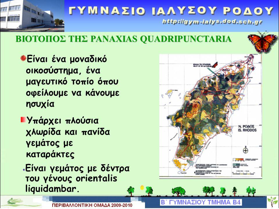 ΒΙΟΤΟΠΟΣ ΤΗΣ PANAXIAS QUADRIPUNCTARIA