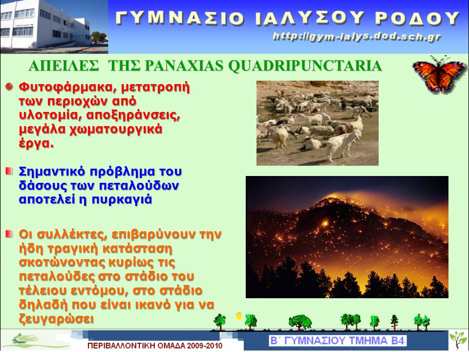 ΑΠΕΙΛΕΣ ΤΗΣ PANAXIAS QUADRIPUNCTARIA