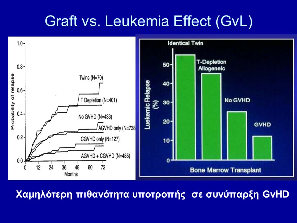 Graft vs. Leukemia Effect (GvL)