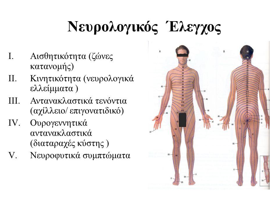 Νευρολογικός Έλεγχος Αισθητικότητα (ζώνες κατανομής)