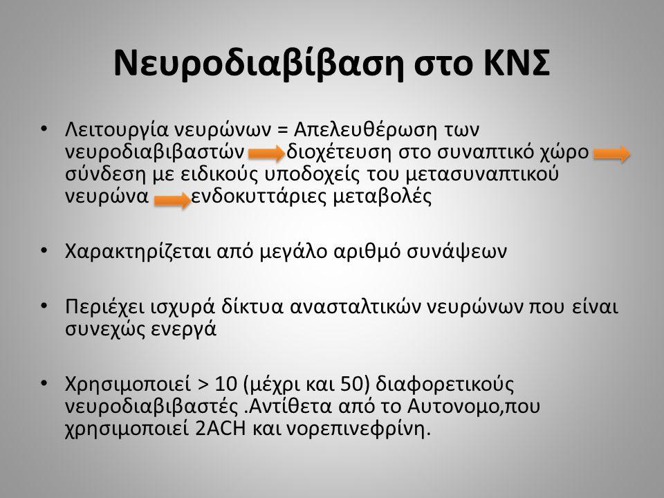 Νευροδιαβίβαση στο ΚΝΣ