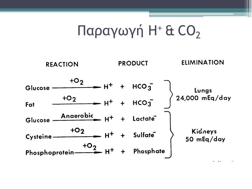 Παραγωγή Η+ & CO2