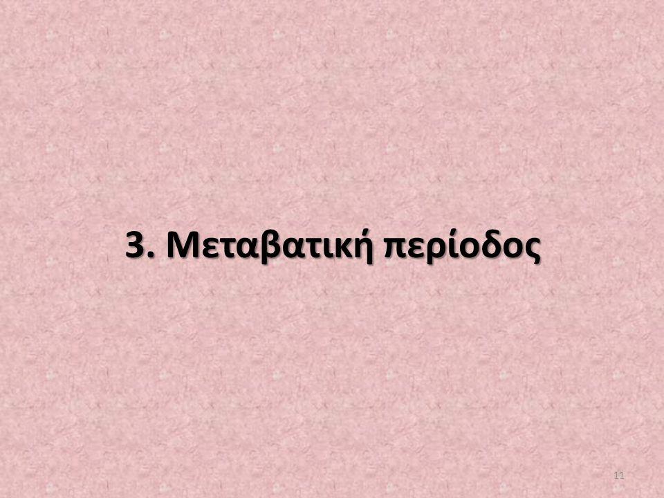 3. Μεταβατική περίοδος