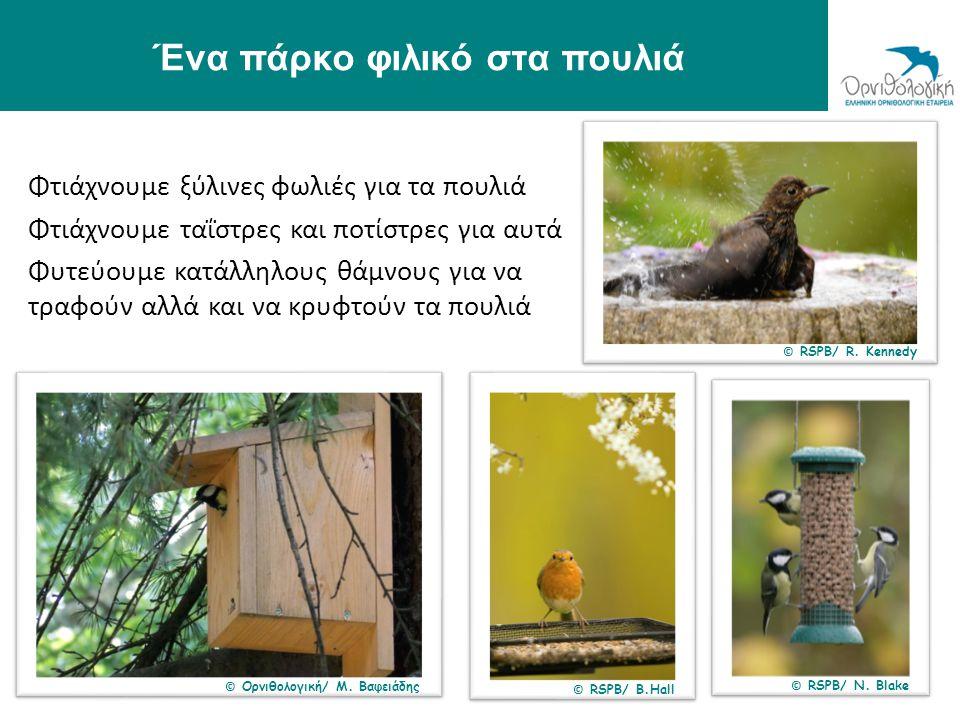Ένα πάρκο φιλικό στα πουλιά