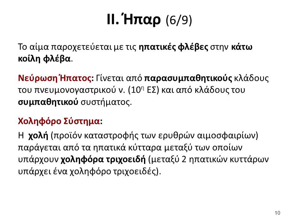 ΙΙ. Ήπαρ (7/9) Τα χοληφόρα χωρίζονται σε: Ενδοηπατικά Εξωηπατικά