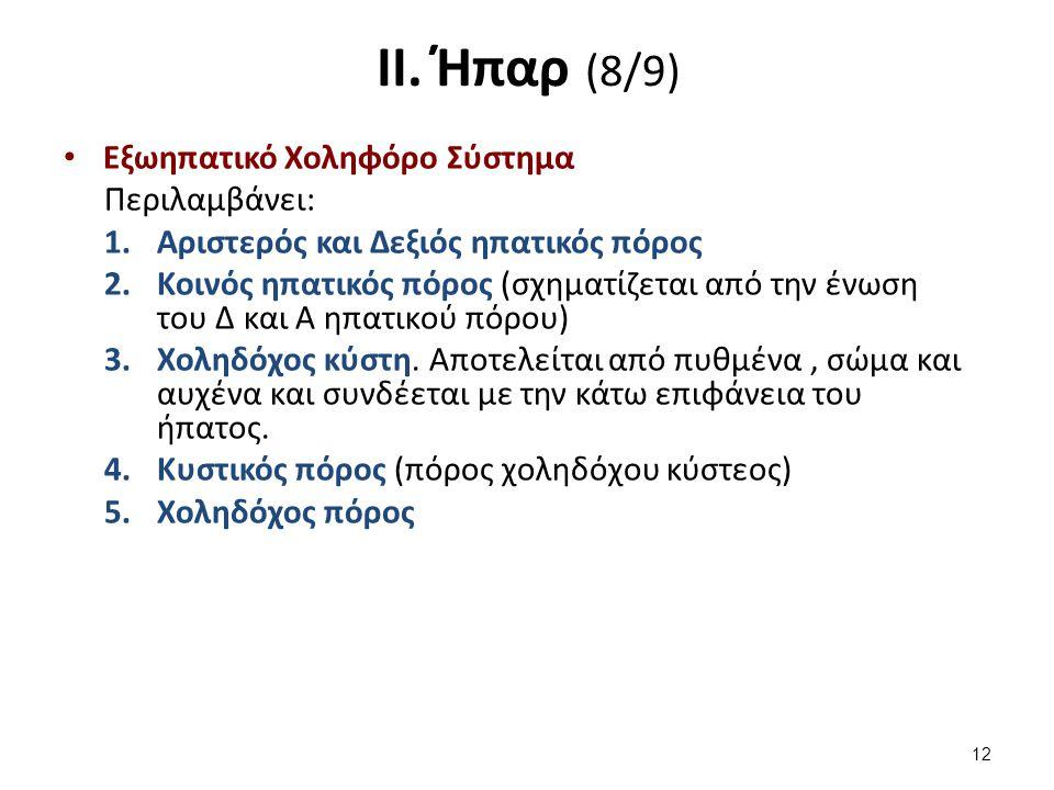 ΙΙ. Ήπαρ (9/9)