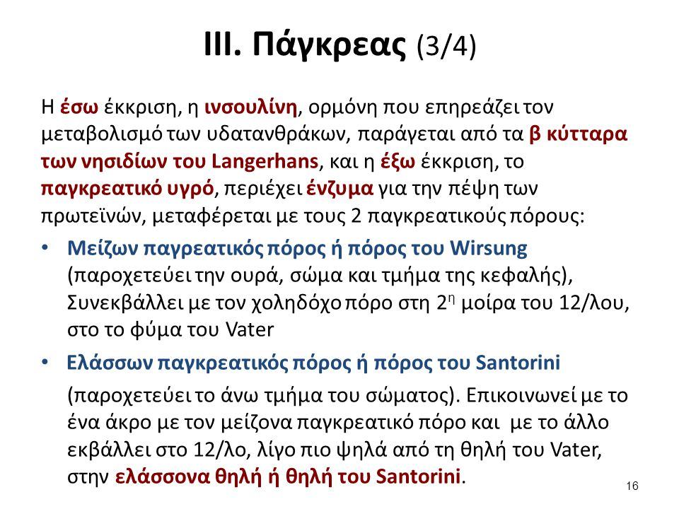 ΙΙΙ. Πάγκρεας (4/4)