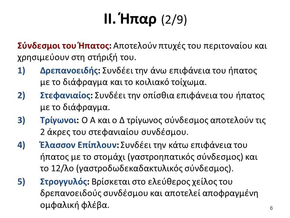 ΙΙ. Ήπαρ (3/9)