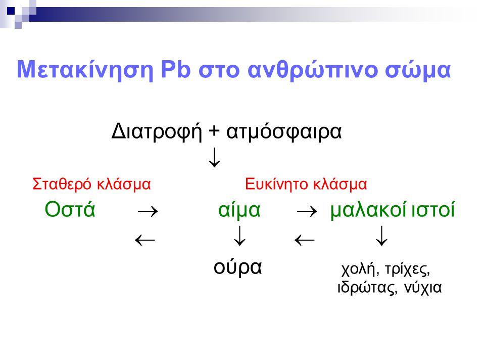 Μετακίνηση Pb στο ανθρώπινο σώμα
