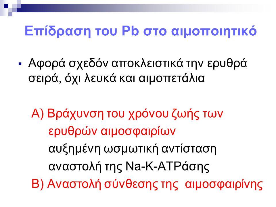Επίδραση του Pb στο αιμοποιητικό