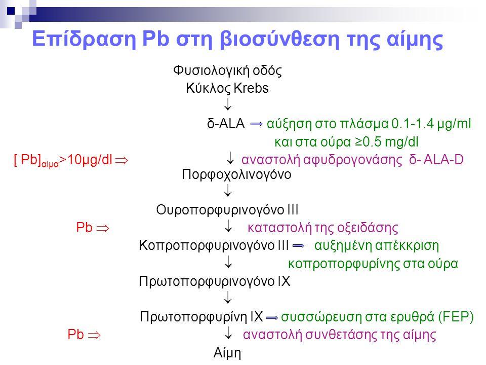 Επίδραση Pb στη βιοσύνθεση της αίμης