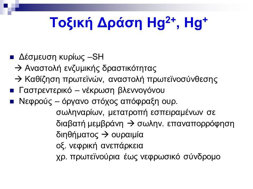 Τοξική Δράση Hg2+, Hg+ Δέσμευση κυρίως –SH