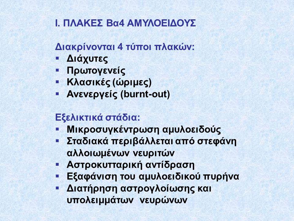 Ι. ΠΛΑΚΕΣ Βα4 ΑΜΥΛΟΕΙΔΟΥΣ