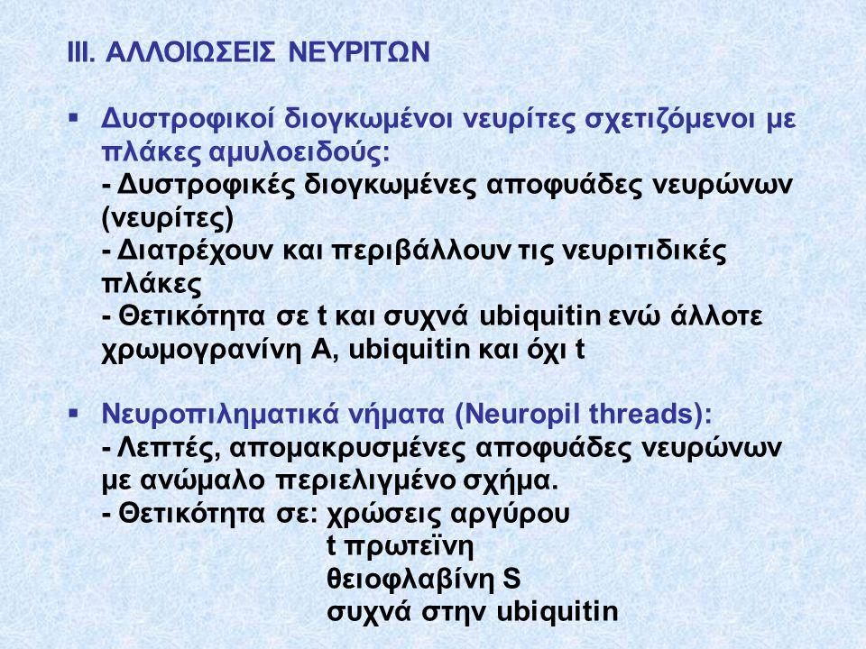 ΙΙΙ. ΑΛΛΟΙΩΣΕΙΣ ΝΕΥΡΙΤΩΝ
