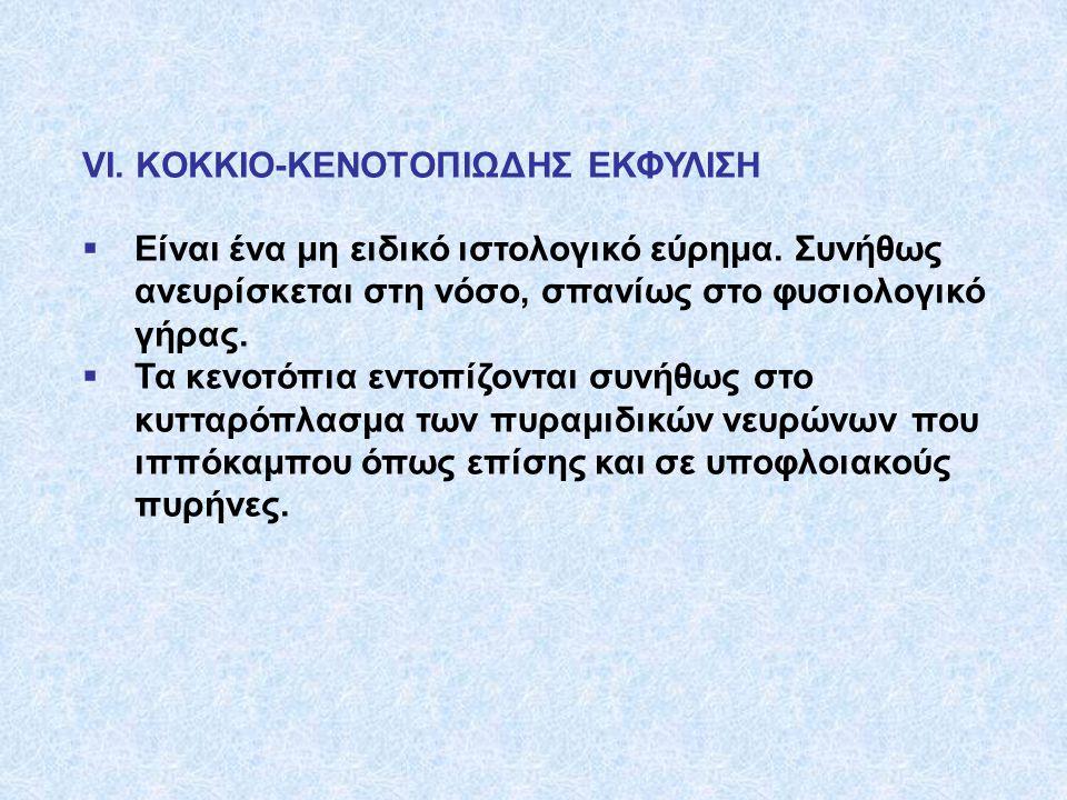 VI. KOKKIO-KENOTOΠΙΩΔΗΣ ΕΚΦΥΛΙΣΗ