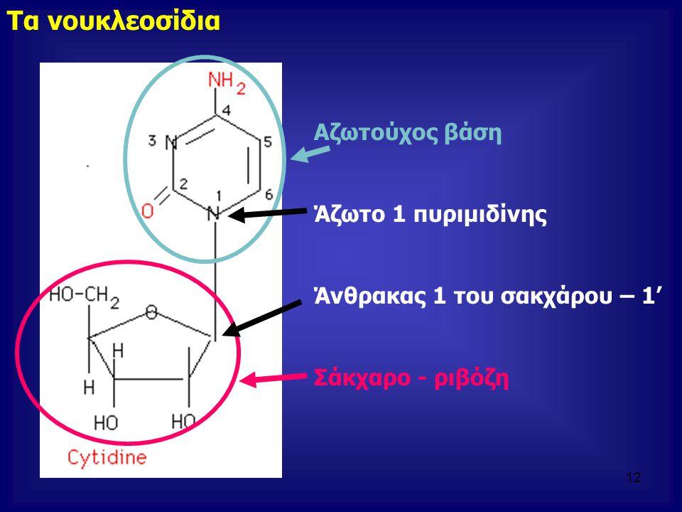 Τα νουκλεοσίδια Αζωτούχος βάση Άζωτο 1 πυριμιδίνης
