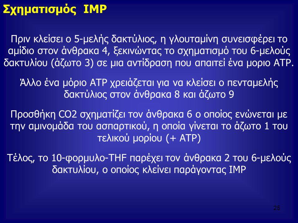 Σχηματισμός ΙΜΡ