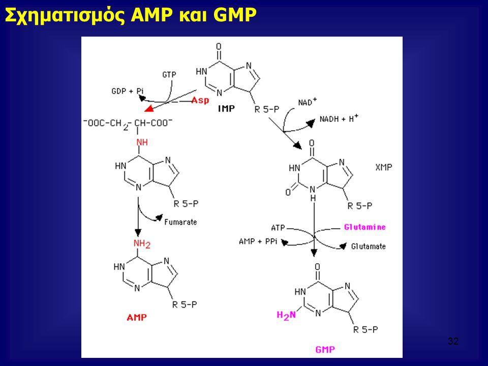Σχηματισμός AMP και GMP