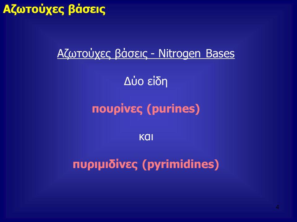 πυριμιδίνες (pyrimidines)