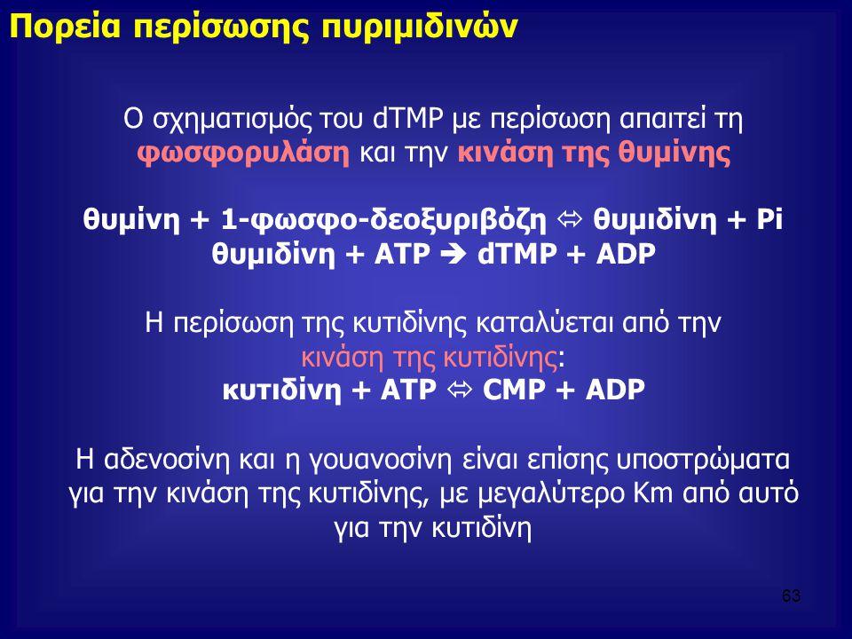 θυμιδίνη + ATP  dTMP + ADP κυτιδίνη + ATP  CMP + ADP