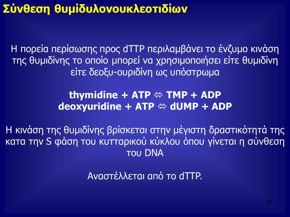 deoxyuridine + ATP  dUMP + ADP