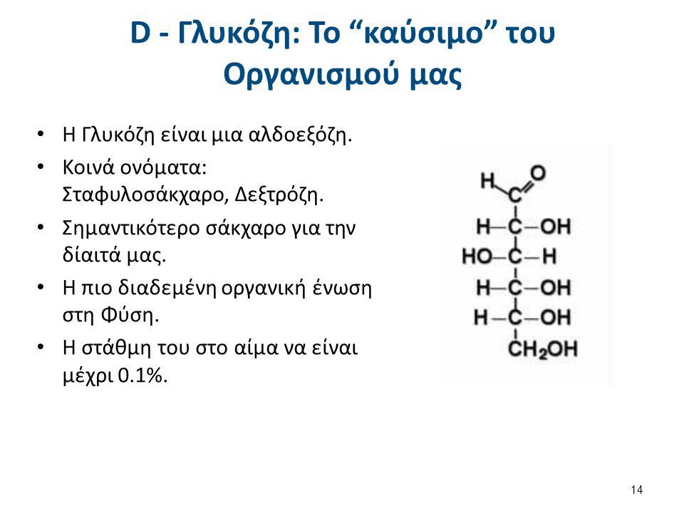 Σημαντικά Σάκχαρα D - Φρουκτόζη D - Γλυκεραλδεϋδη