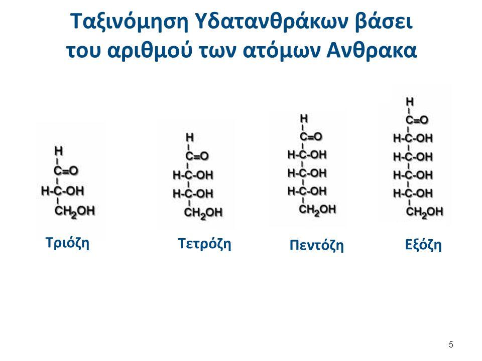 Παραδείγματα D – Ριβόζη Αλδοπεντόζη L- Μανόζη Αλδοεξόζη D-Φρουκτόζη
