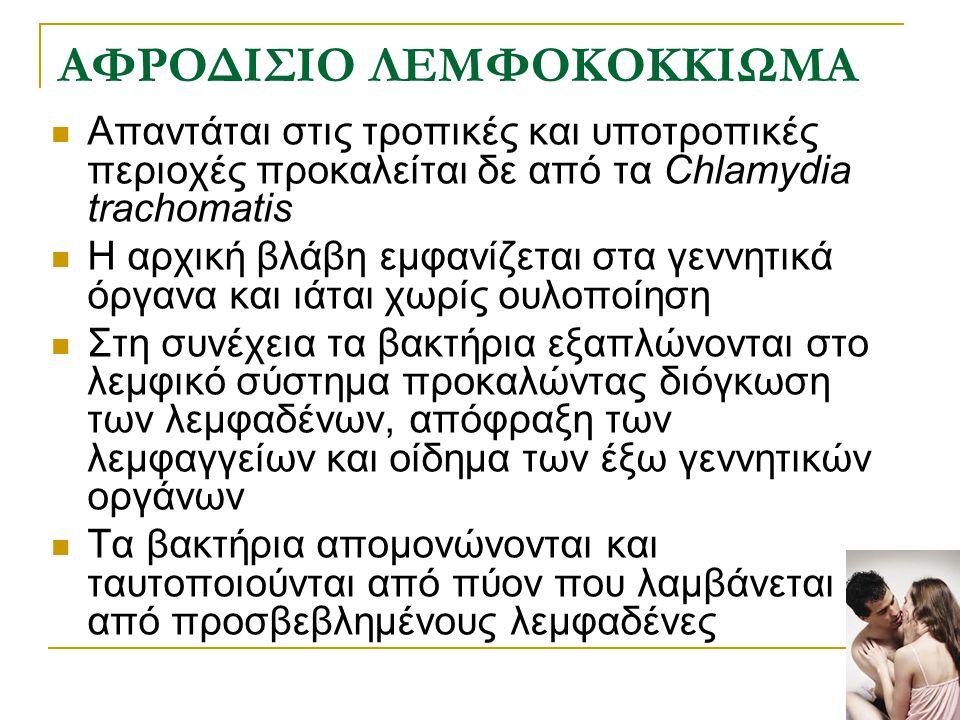 ΑΦΡΟΔΙΣΙΟ ΛΕΜΦΟΚΟΚΚΙΩΜΑ