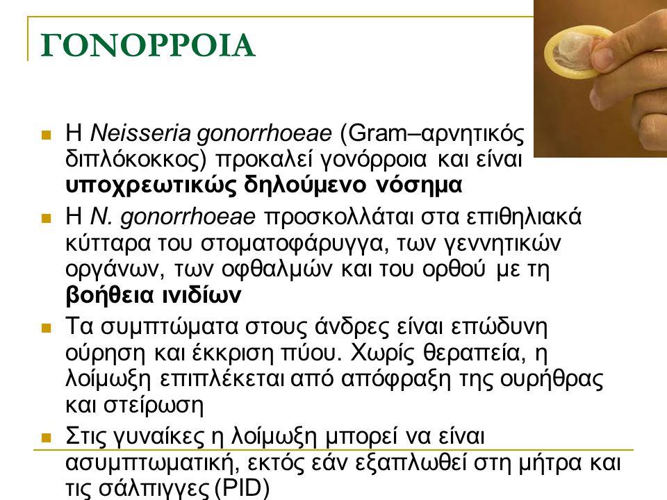 ΓΟΝΟΡΡΟΙΑ Η Neisseria gonorrhoeae (Gram–αρνητικός διπλόκοκκος) προκαλεί γονόρροια και είναι υποχρεωτικώς δηλούμενο νόσημα.