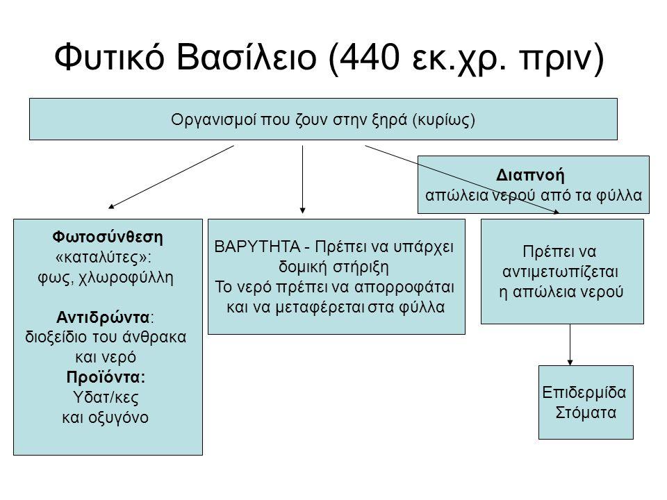 Φυτικό Βασίλειο (440 εκ.χρ. πριν)