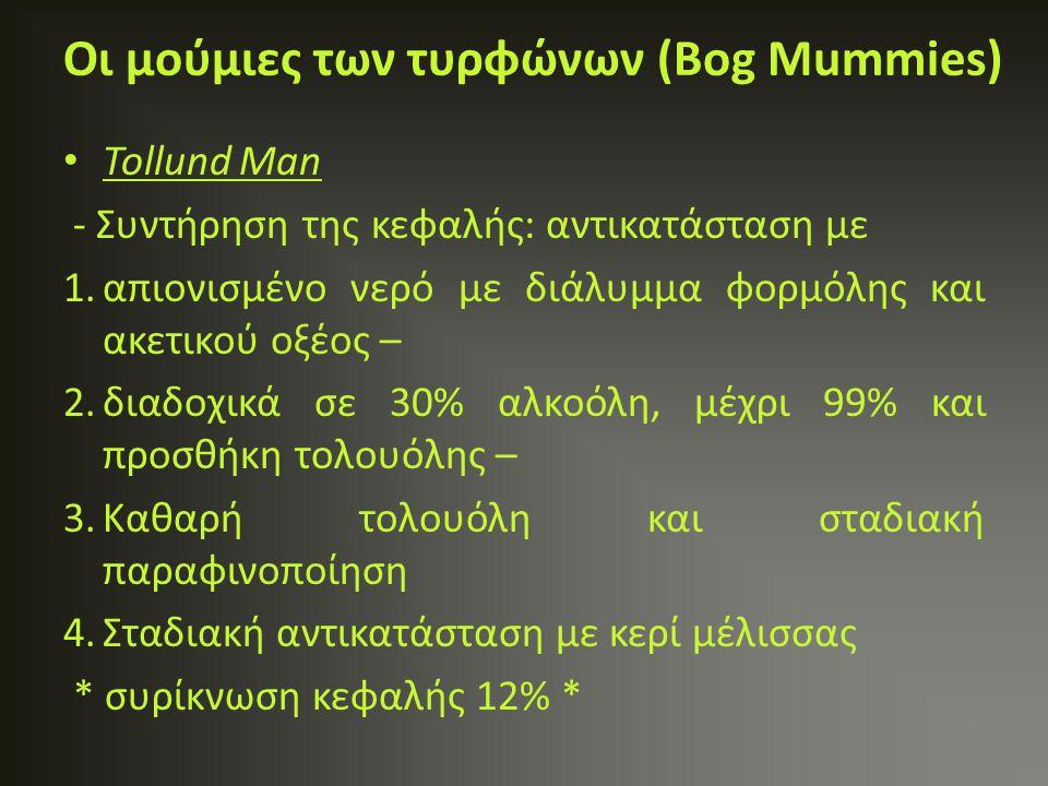 Οι μούμιες των τυρφώνων (Bog Mummies)