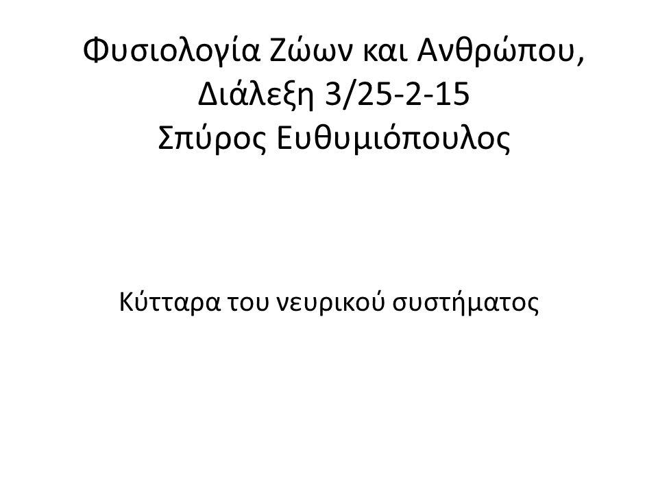 Φυσιολογία Ζώων και Ανθρώπου, Διάλεξη 3/25-2-15 Σπύρος Ευθυμιόπουλος