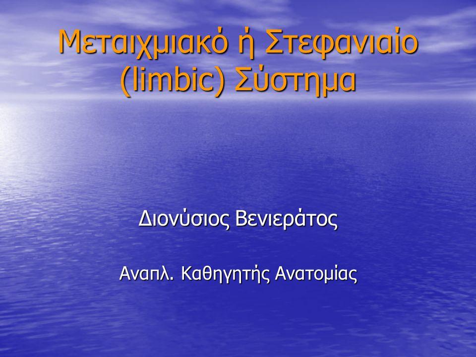 Μεταιχμιακό ή Στεφανιαίο (limbic) Σύστημα